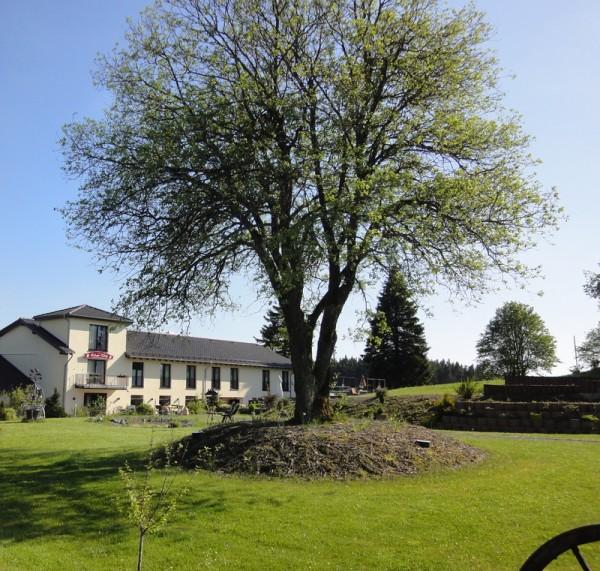 AstenRose - Landhotel am Rothaarsteig - 3 Nächte - A2019