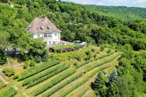 Flair Hotel und Restaurant Villa Ilske - A2019